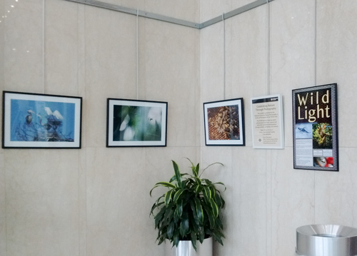 Nature Photography Traveling Exhibit
