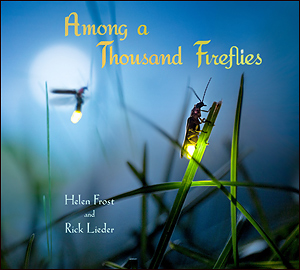Among a Thousand Fireflies cover